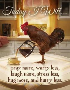 today i will